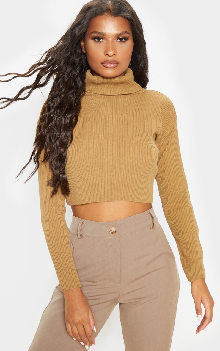 Camel Knitted Rib Cropped Roll Neck Jumper 4