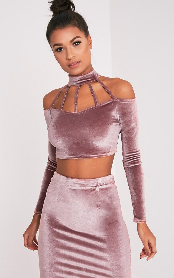 Whitney Pink Velvet Cold Shoulder Choker Crop Top 1