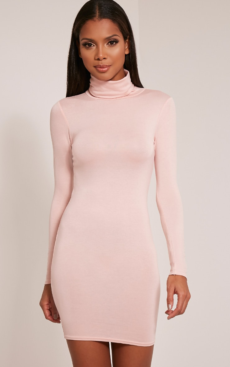 Basic Nude Roll Neck Bodycon Dress 1