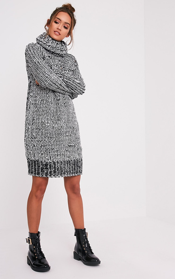 Xael Monochrome Knitted Roll Neck Oversized Dress 5