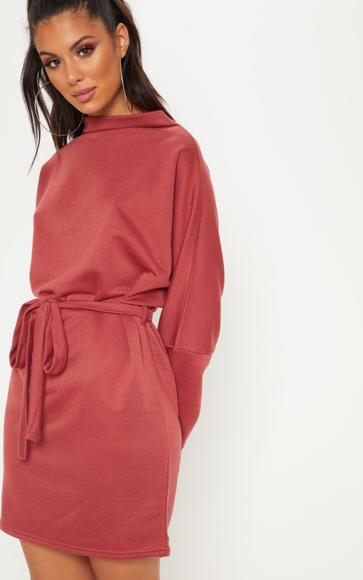 Brick Oversized Funnel Neck Tie Waist Jumper Dress 5