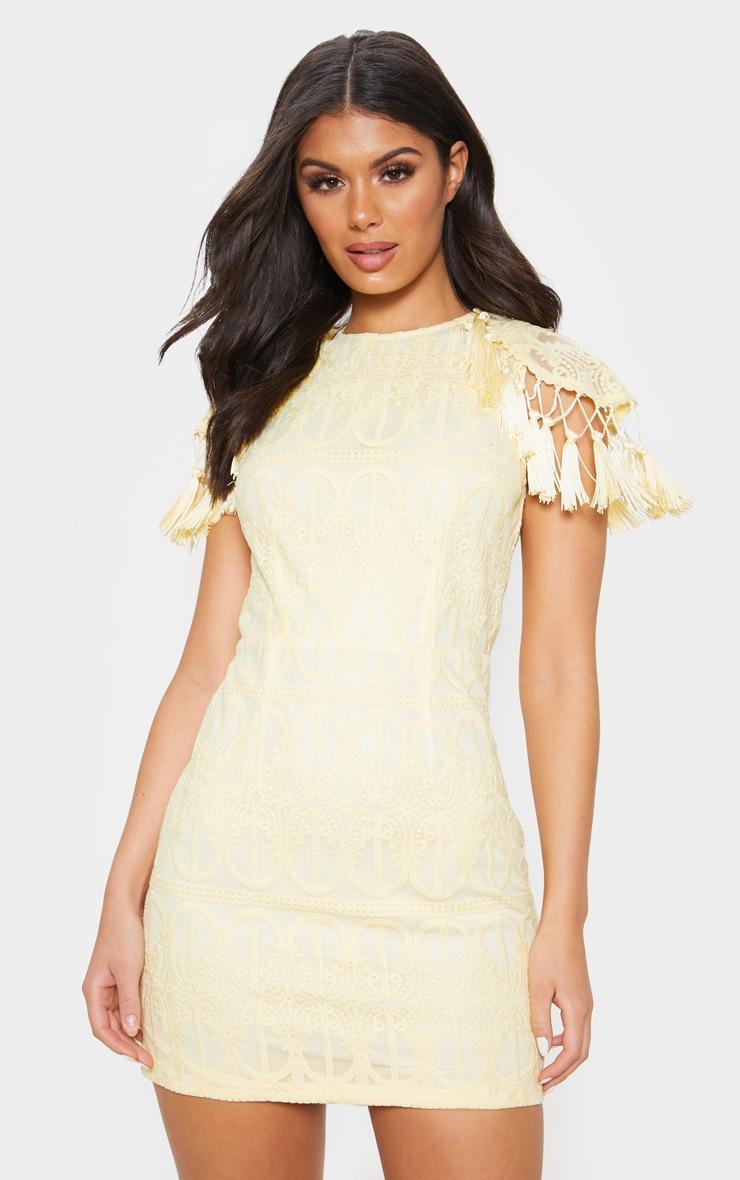 Lemon Lace Tassel Cape Detail Bodycon Dress 4