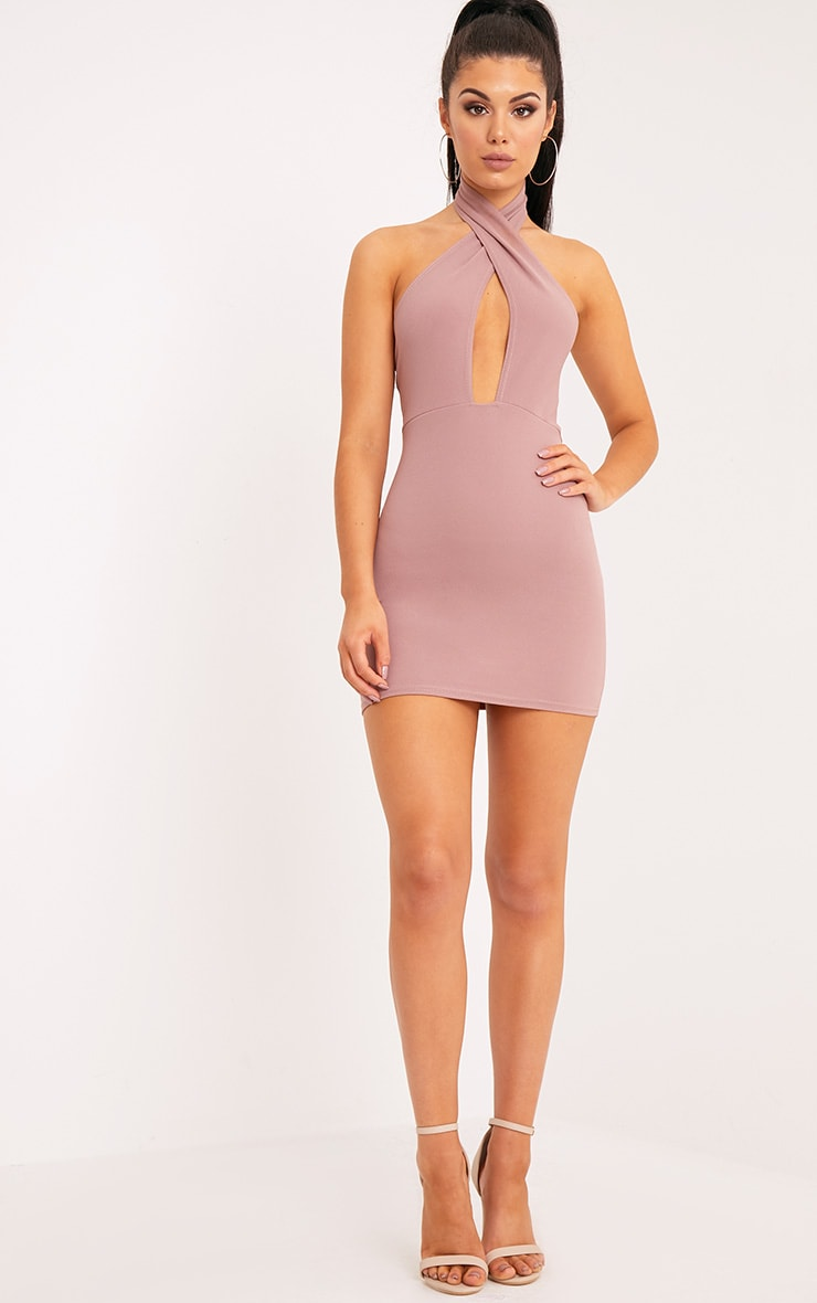 Wendina Truffle Cross Front Crepe Bodycon Dress 3