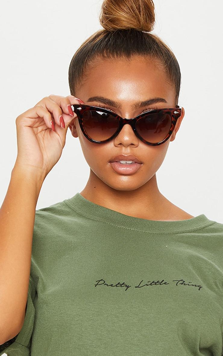 Brown Tortoiseshell Oversized Cat Eye Sunglasses