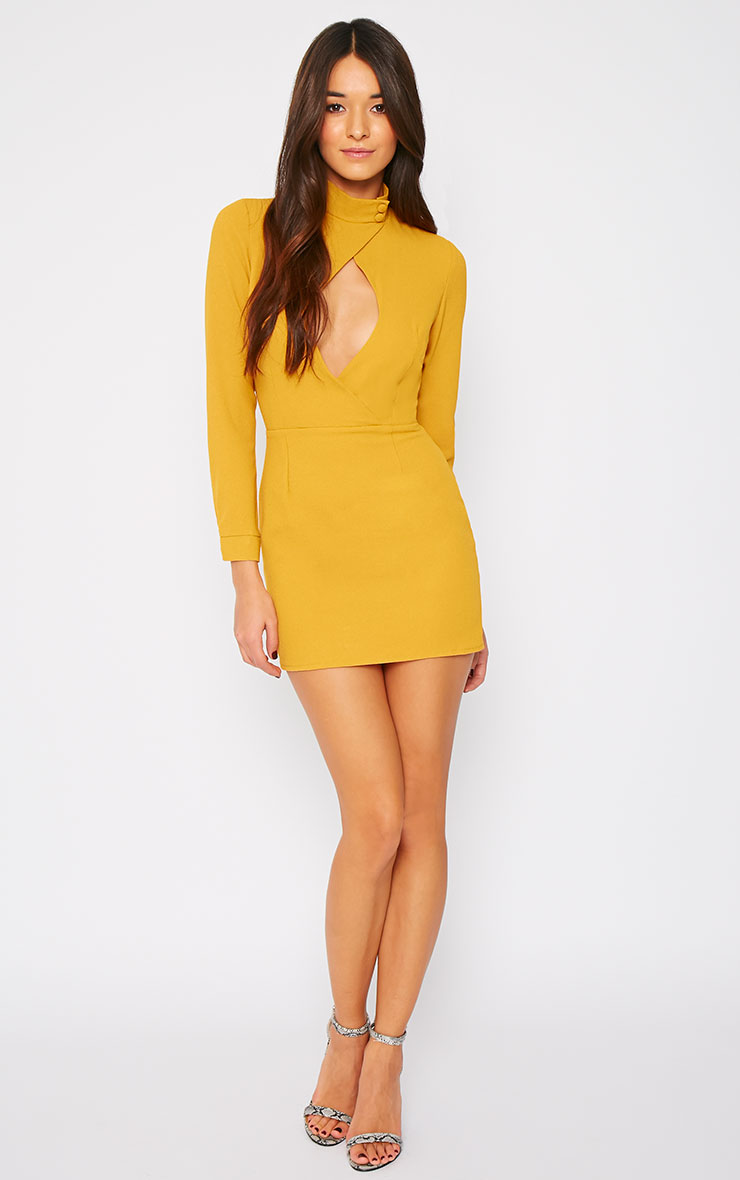 Edie Mustard Cut Out Dress 3