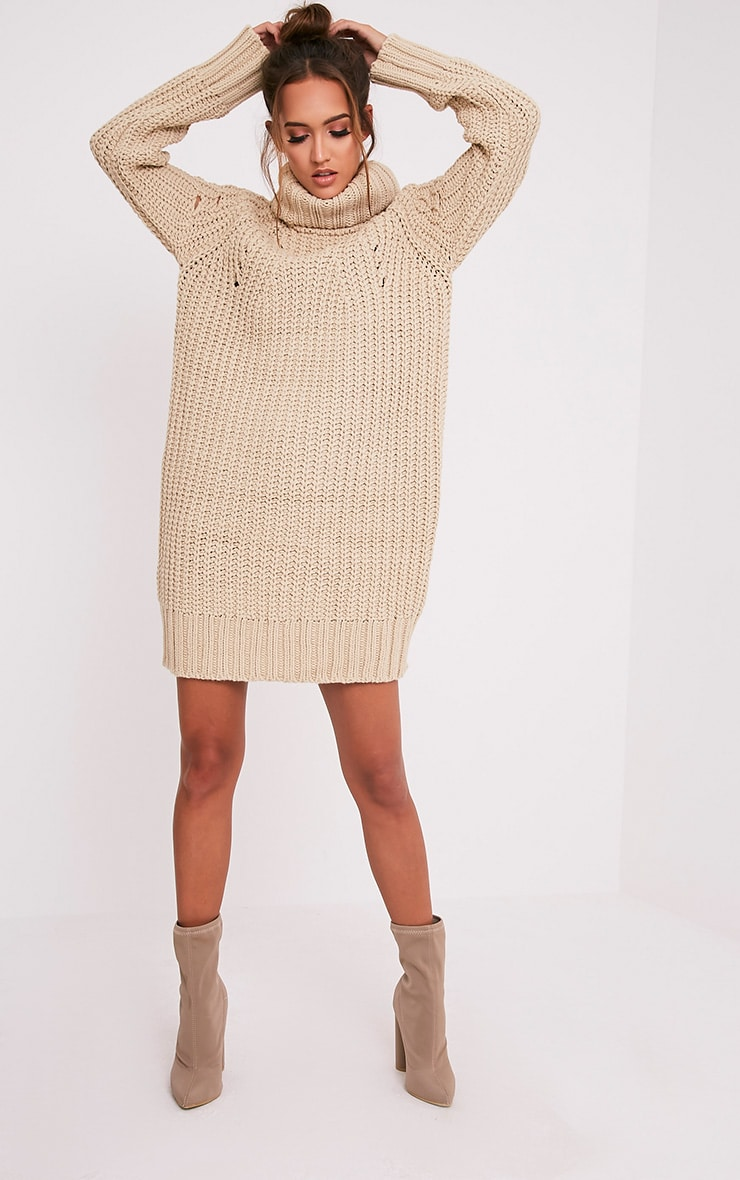 Xael Stone Knitted Roll Neck Overesized Dress 5