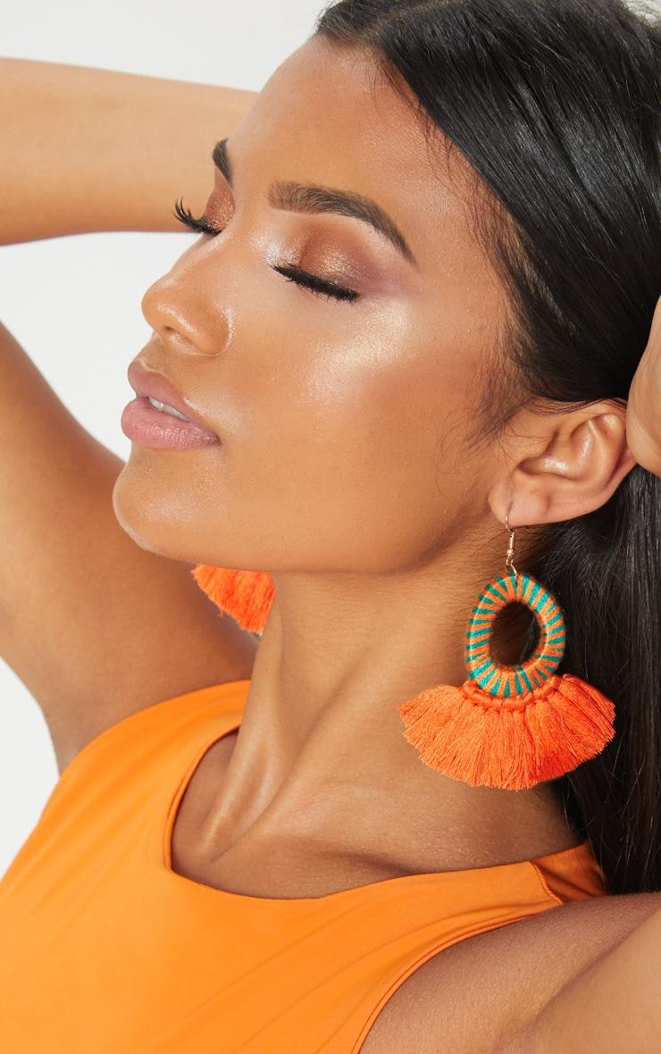 Orange Stripe Tassel Earrings 1