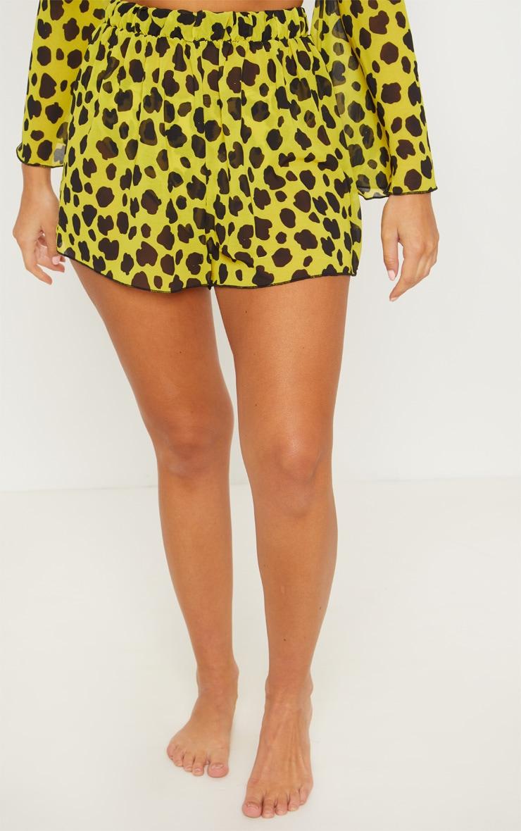 Yellow Cheetah Beach Shorts 2