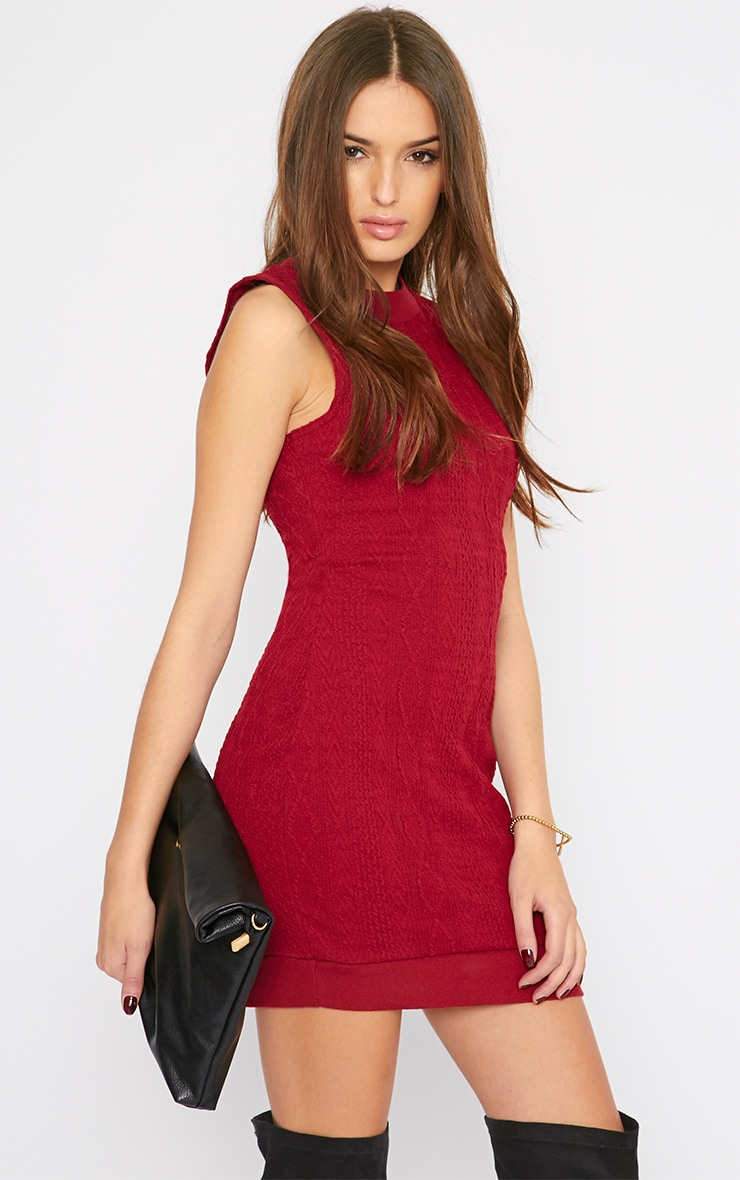 Darcie Red Cable Knit Textured Sleeveless Dress 4