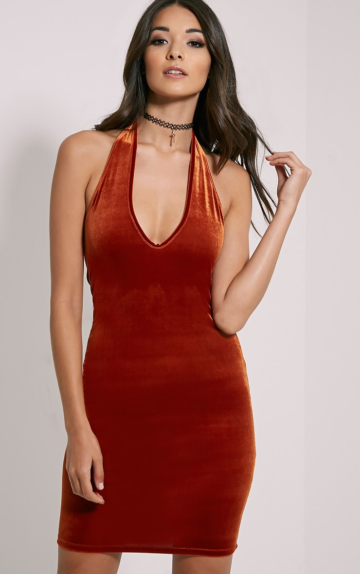 Suzie Rust Velvet Mini Dress 1