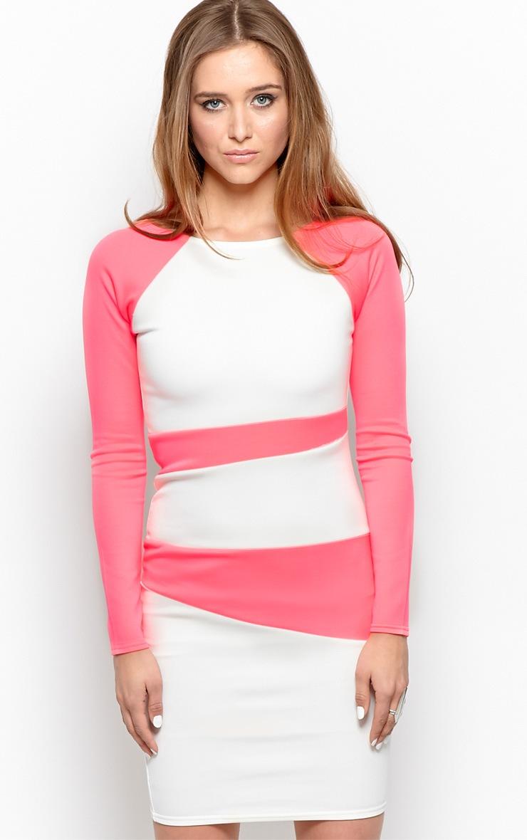 Taylor Neon Pink Segment Midi Scuba Dress-12 1