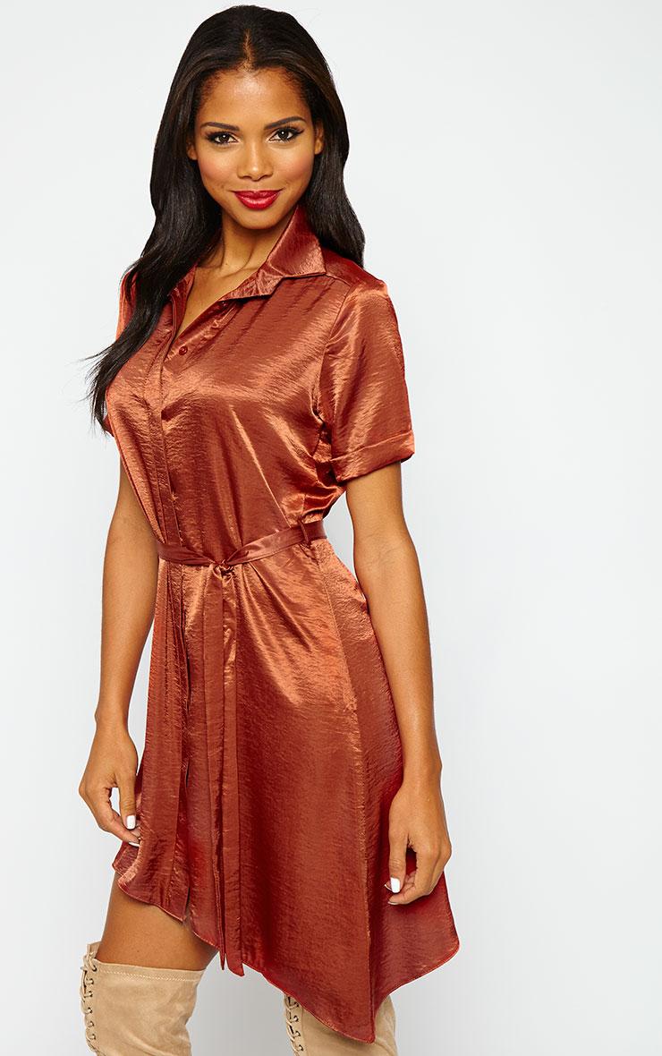 Leigha Rust Silky Shirt Dress 4
