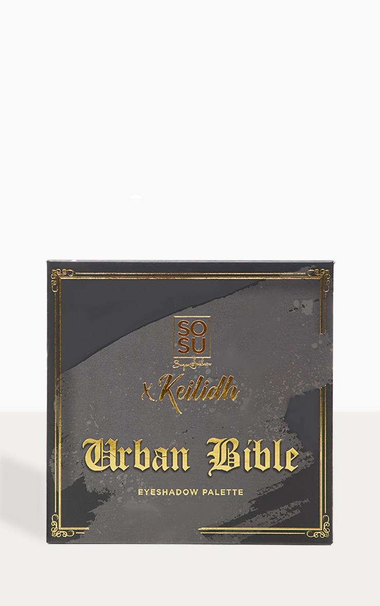 SOSUBYSJ Keilidh Urban Bible Eyeshadow Palette 2