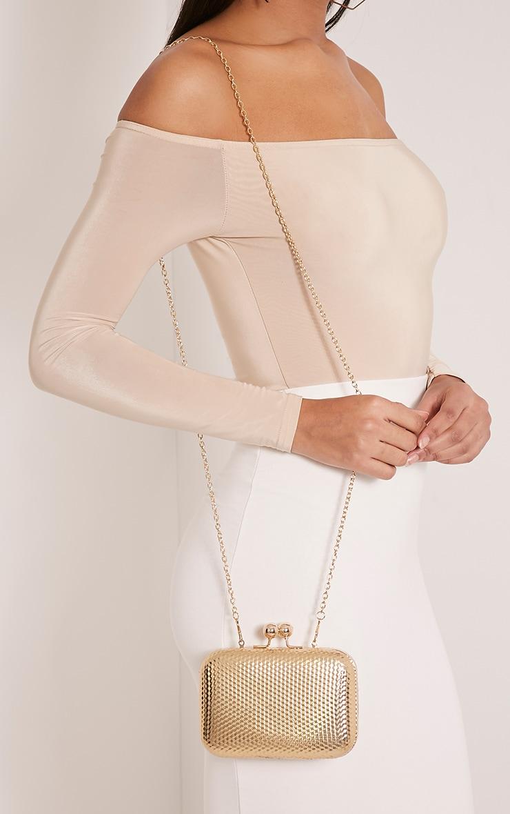 Morgan Gold Box Clutch Bag 2
