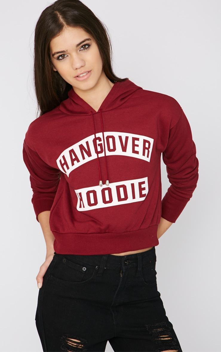 Macee Burgundy Cropped Hangover Hoodie 4