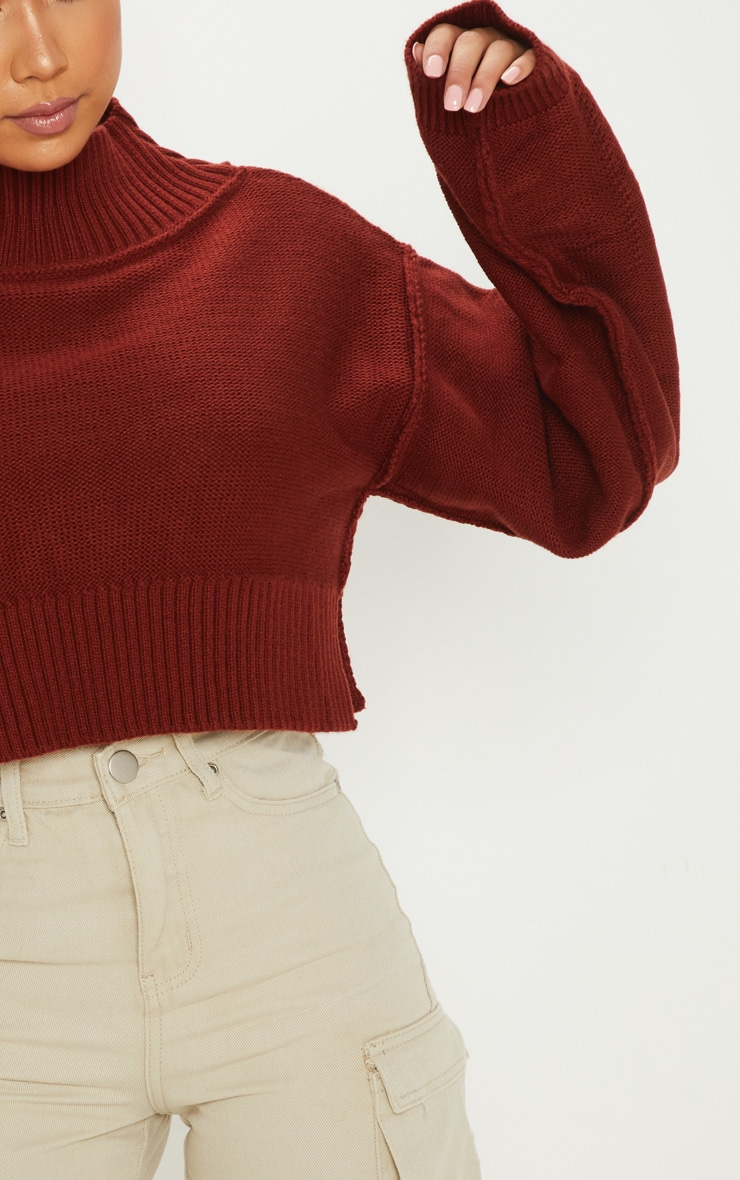 Petite Rust Cropped Sweater 5