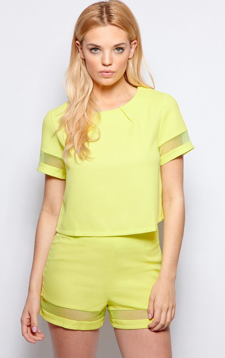 Alyssa Lime Mesh Insert Crop Top 1