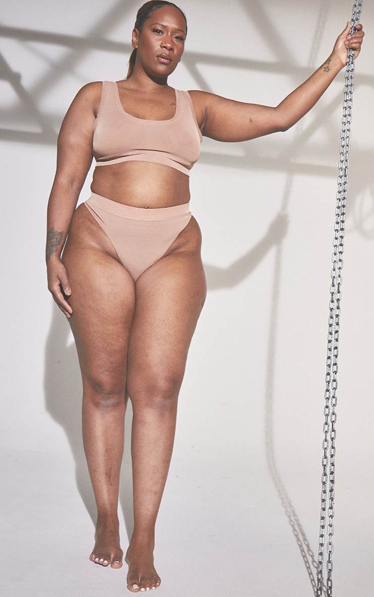 Plus Second Skin Clay High Waisted Mesh Thong 3
