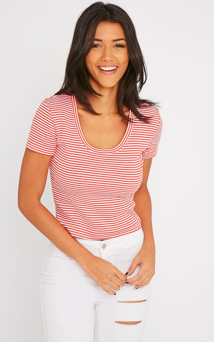 Bertie Red Stripe Crop Tee 4
