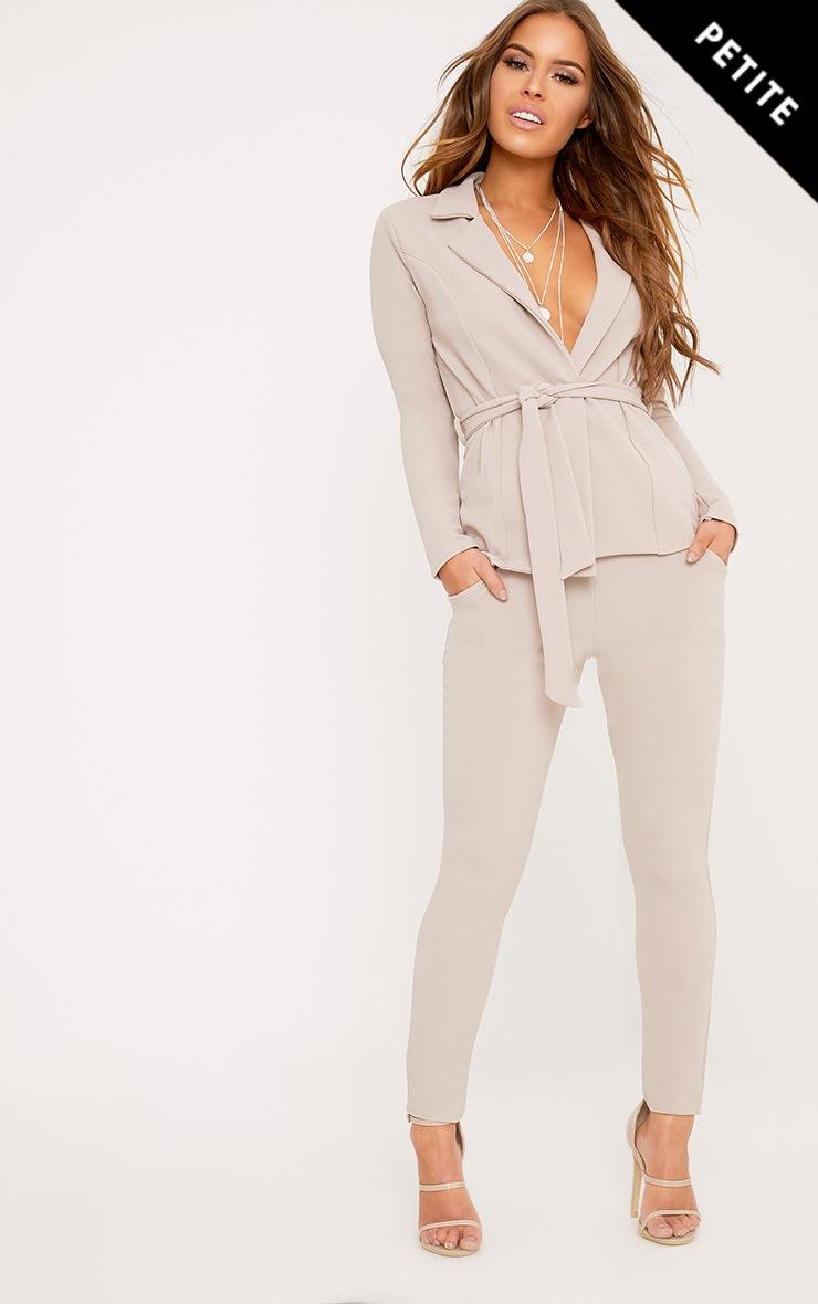 Petite Ashline Grey Skinny Trousers 1