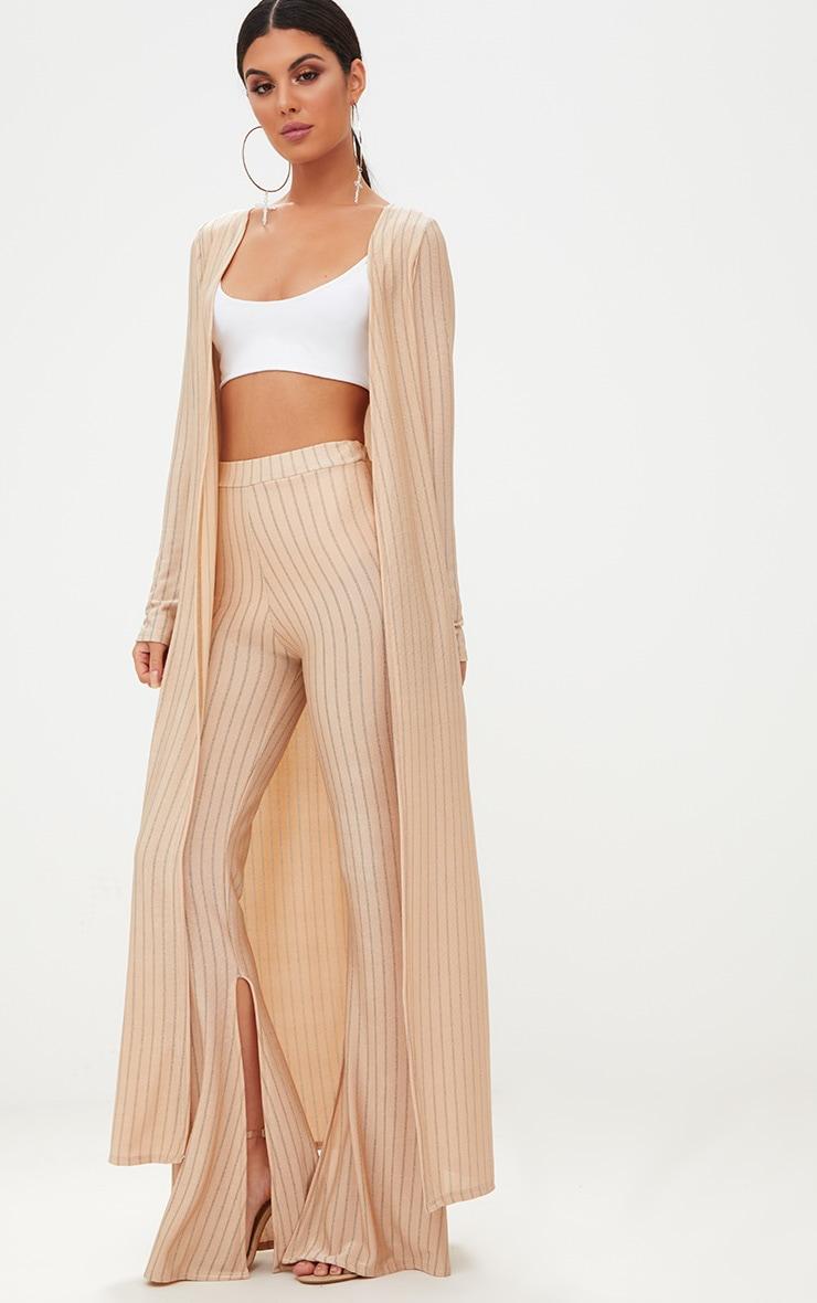 Nude Glitter Stripe Trouser  1