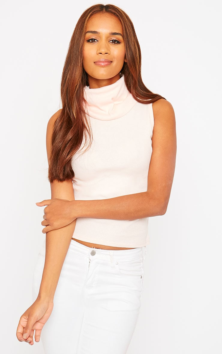 Melina Nude Ribbed Turtle Neck Top 1