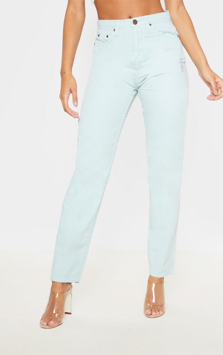 Mint High Waist Mom Jeans 2