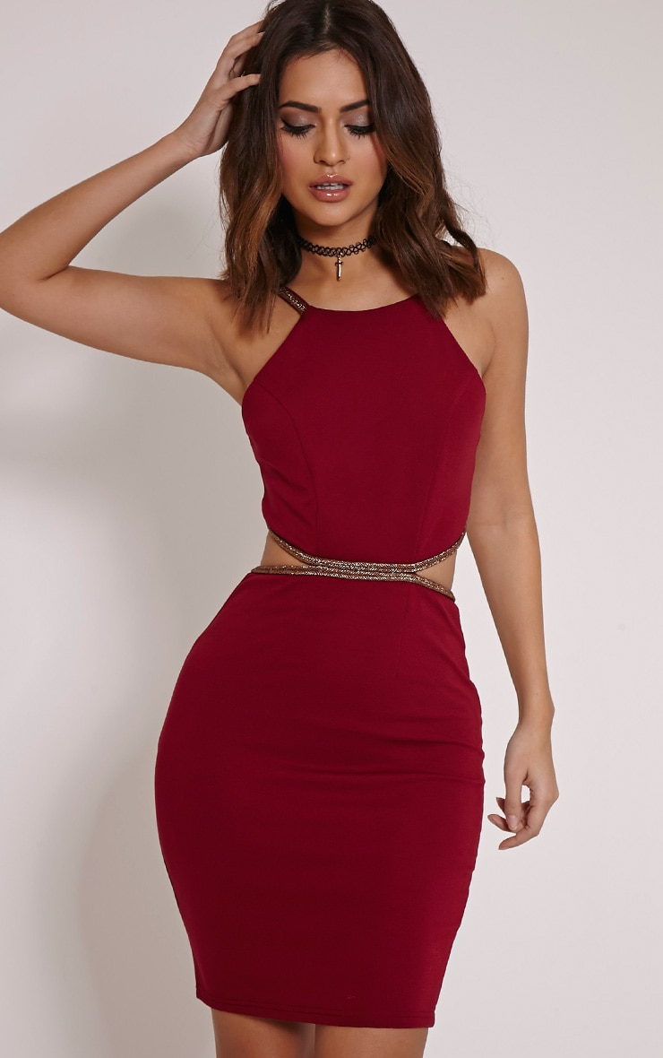 Sameena Burgundy Cut Out Mini Dress 1