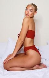 Brown Crinkle High Leg High Waist Bikini Bottom 2