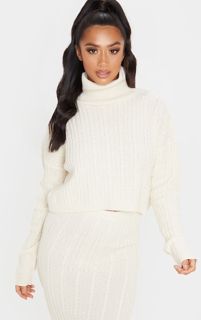 Petite Stone Roll Neck Knitted Cropped Long Sleeve Jumper