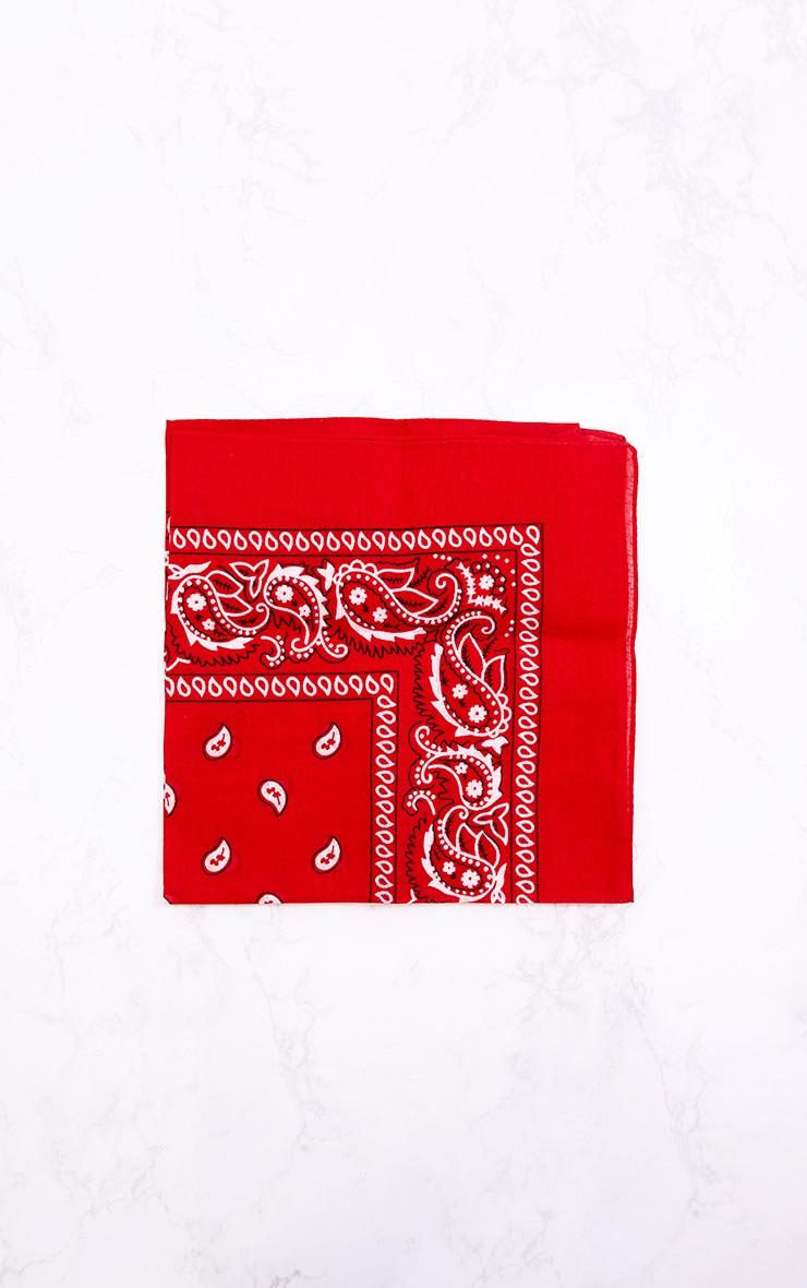 Red Bandana 4