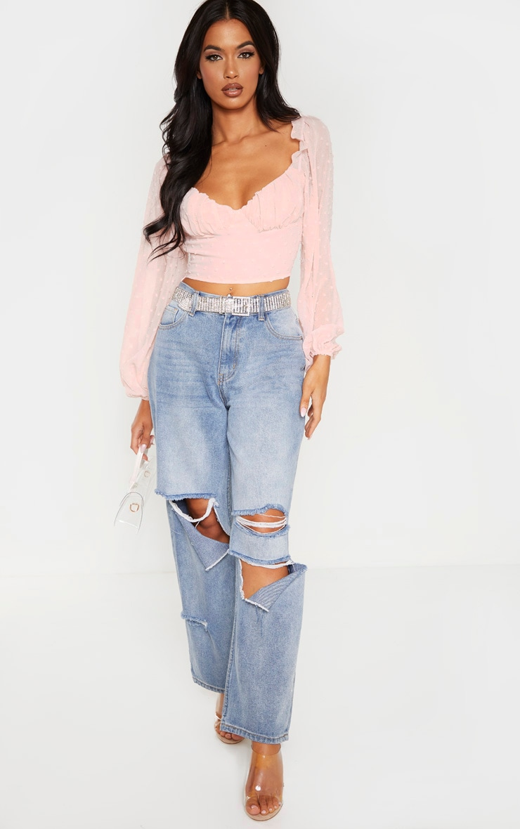 Rose Dobby Mesh Cup Detail Long Sleeve Crop Top 4