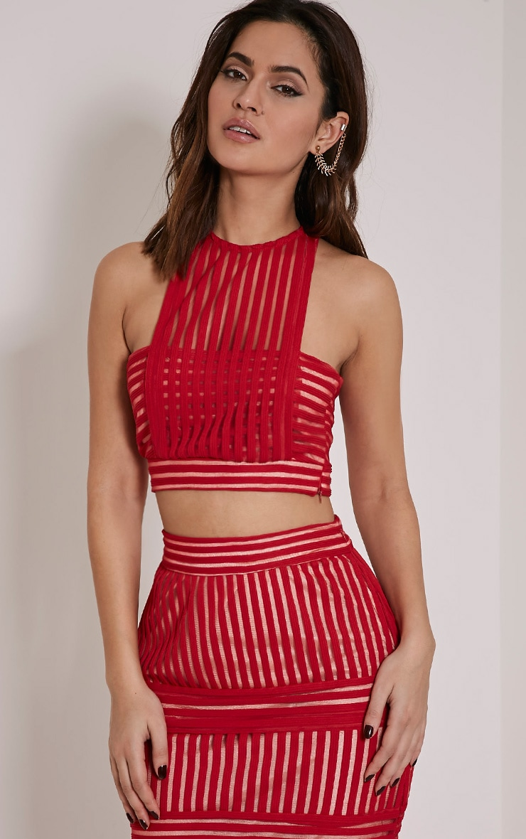 Velette Red Striped Mesh Crop Top 1