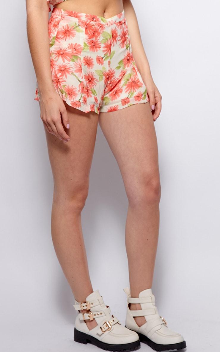 Toni Cream Floral Print Chiffon Shorts 4