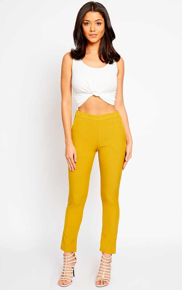 Kit Mustard Trousers 6