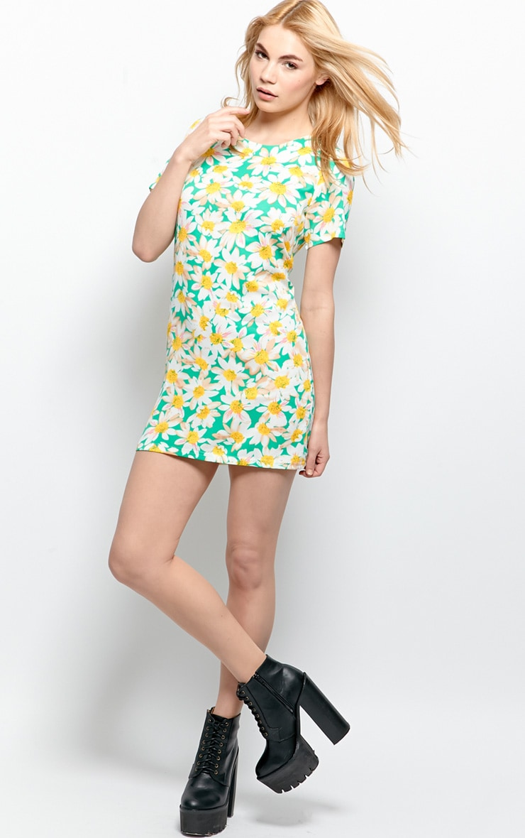 Lybah Mint Floral Shift Dress 4