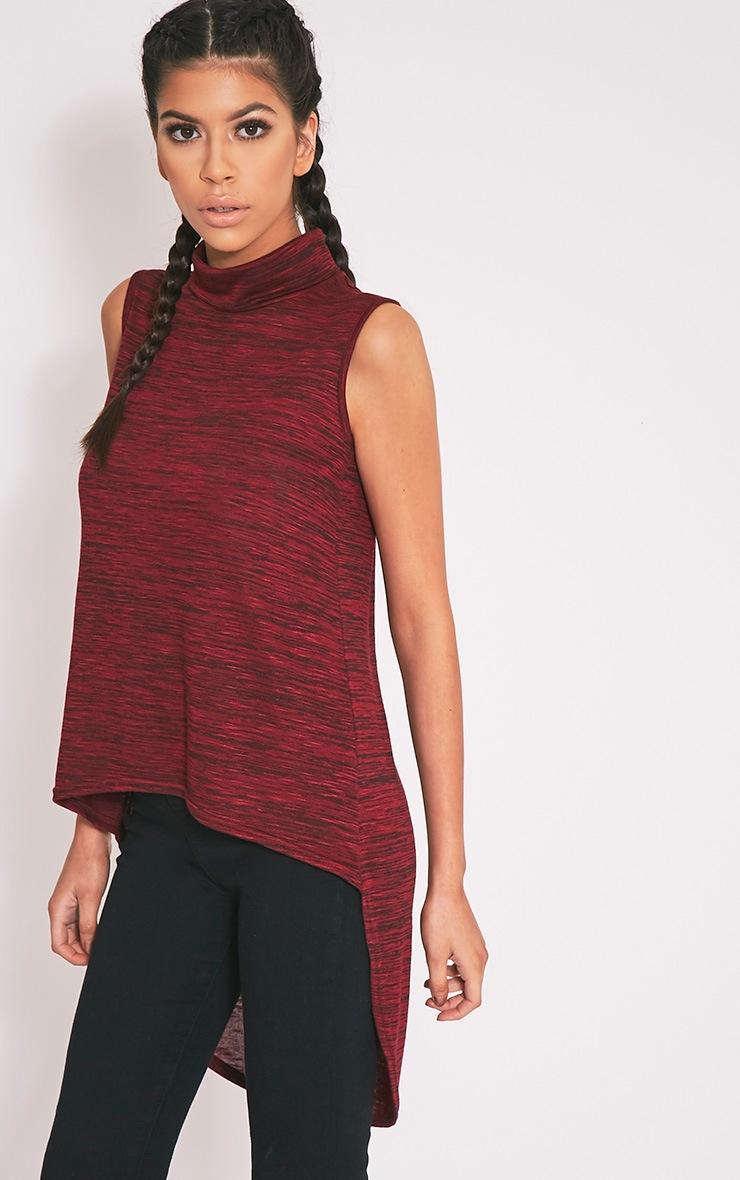 Miae Dark Red Fine Knit High Neck Top 1