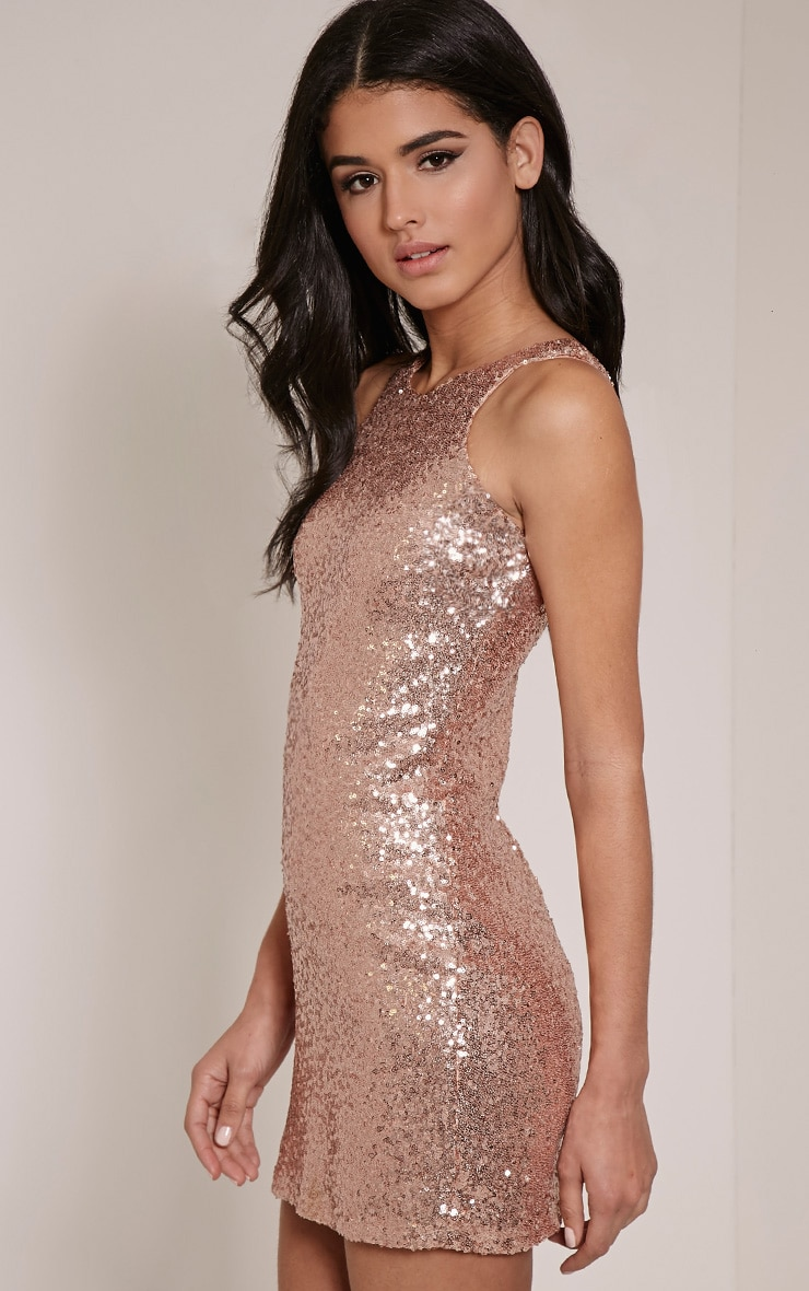 Twiggie Rose Sequin Mini Dress 4