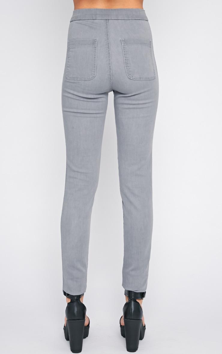 Dina Grey High Waist Skinny Jean  3