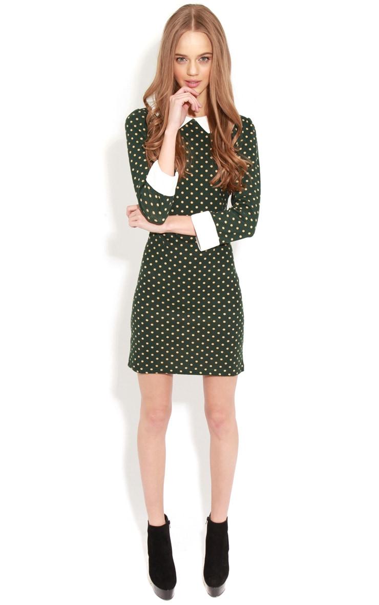 Abril Green Polka Dot Collared Dress 3