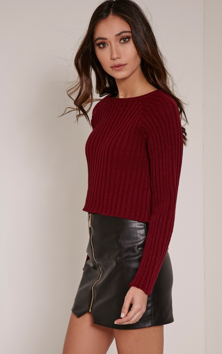 Laurah Burgundy Ribbed Crop Jumper 4
