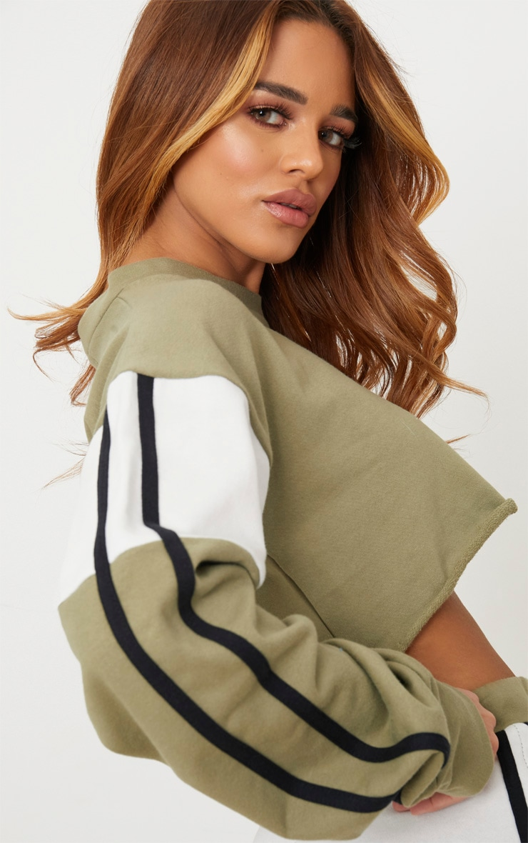 Petite Sage Green Contrast Cropped Sweater  4