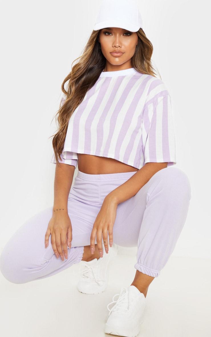 Lilac Stripe Crop T Shirt 4