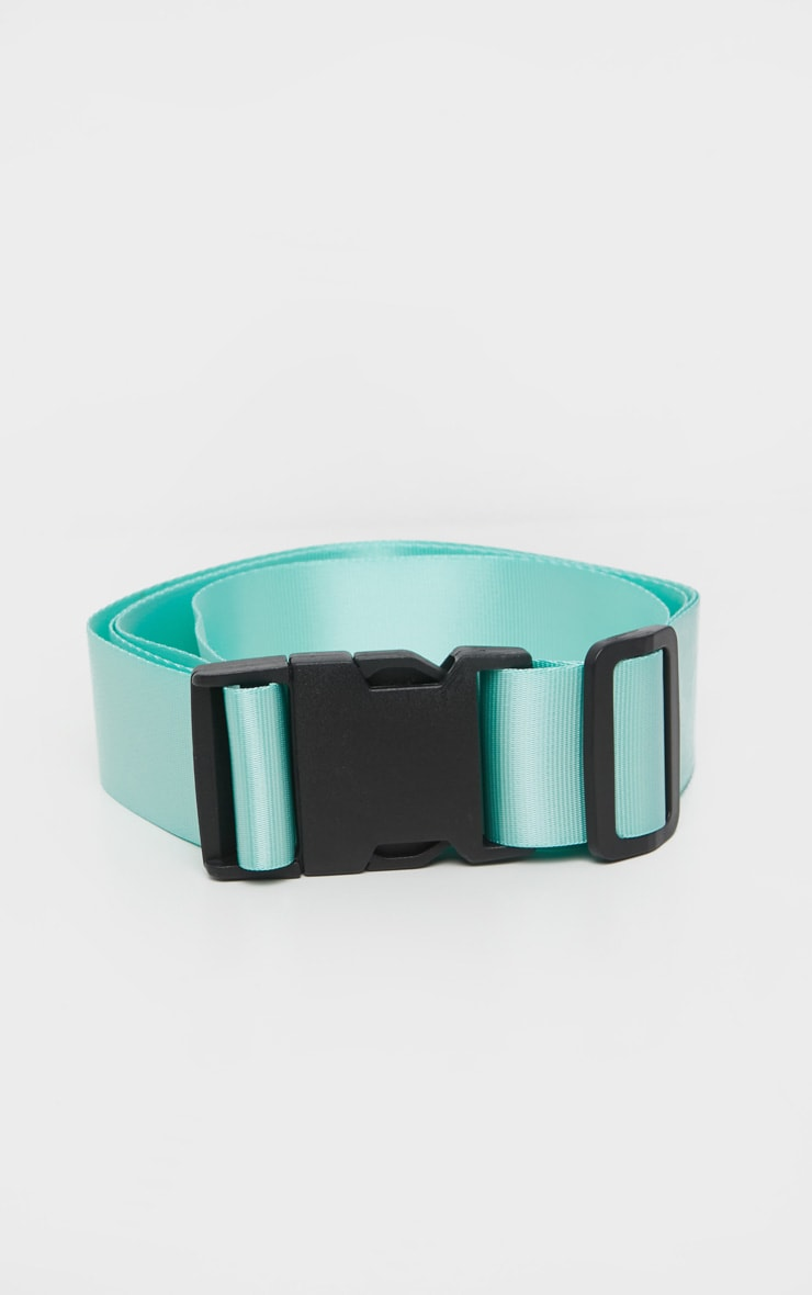Mint Buckle Double Tape Belt 3