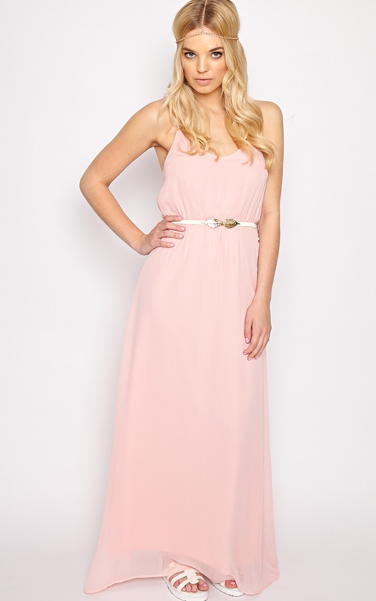 Verity Pink Chiffon Maxi Dress-M 3