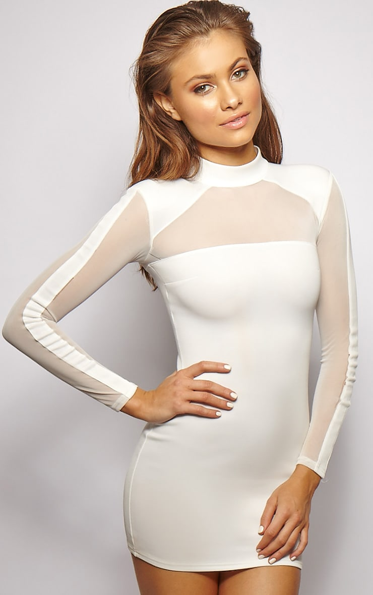 Xara White Structured Mesh Panel Dress 1