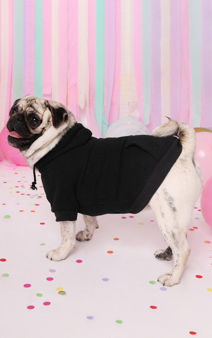 Black Doggy Hoodie 1