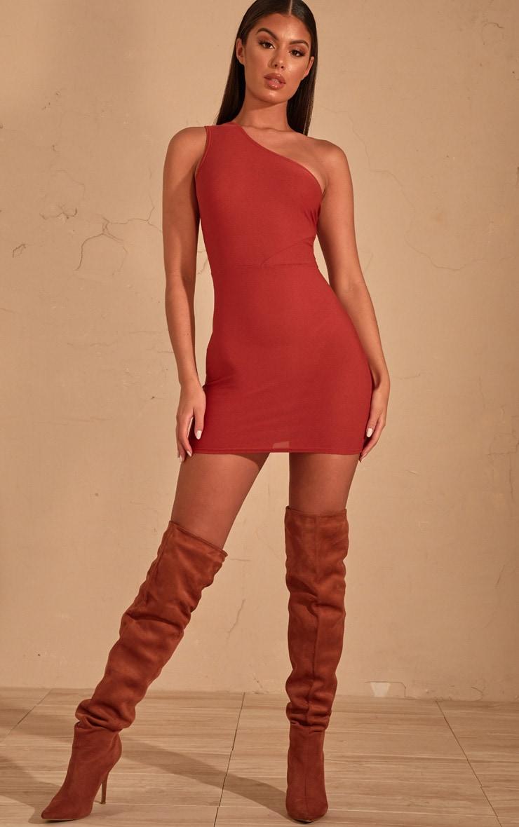 Auburn One Shoulder Bodycon Dress