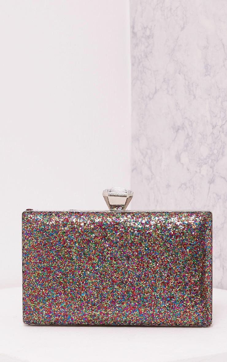Dinnie Multi Glitter Box Clutch Bag 3