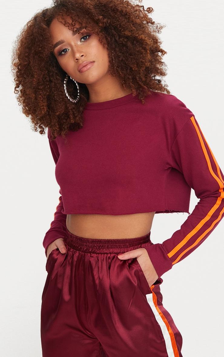 Maroon Stripe Sleeve Crop Sweater 2